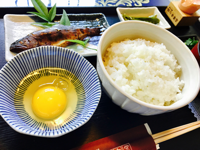 TOJ美濃ステージと中濃周遊ライド 古地鶏の卵かけごはん定食 アマゴの甘露煮